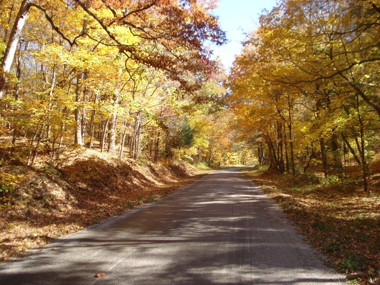 Kay Courtney: Winding Road. Monroe County.