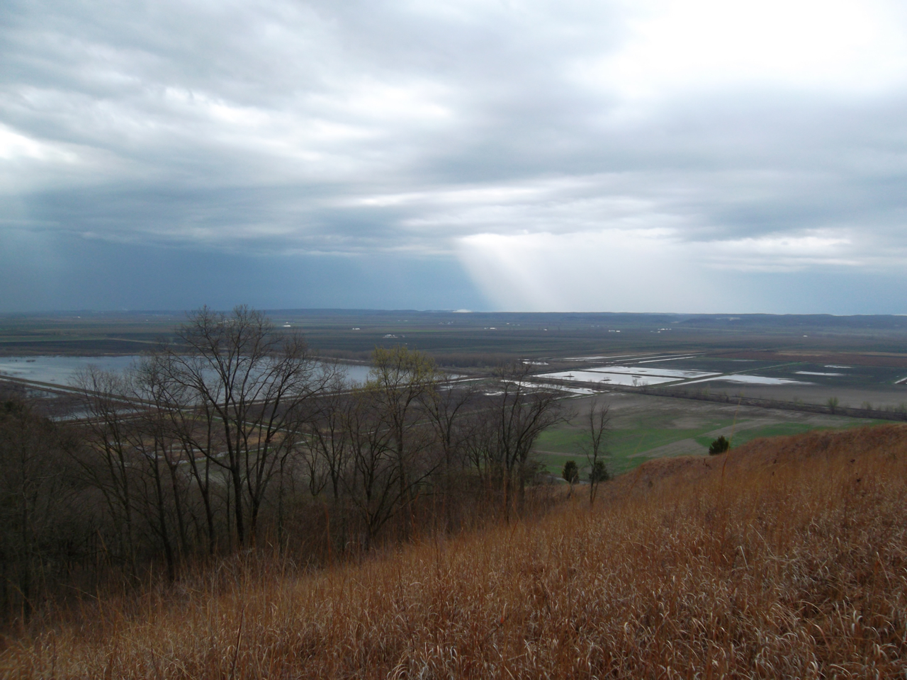 Laura Schaefer: Fults Hill Prairie Nature Preserve. Monroe County.