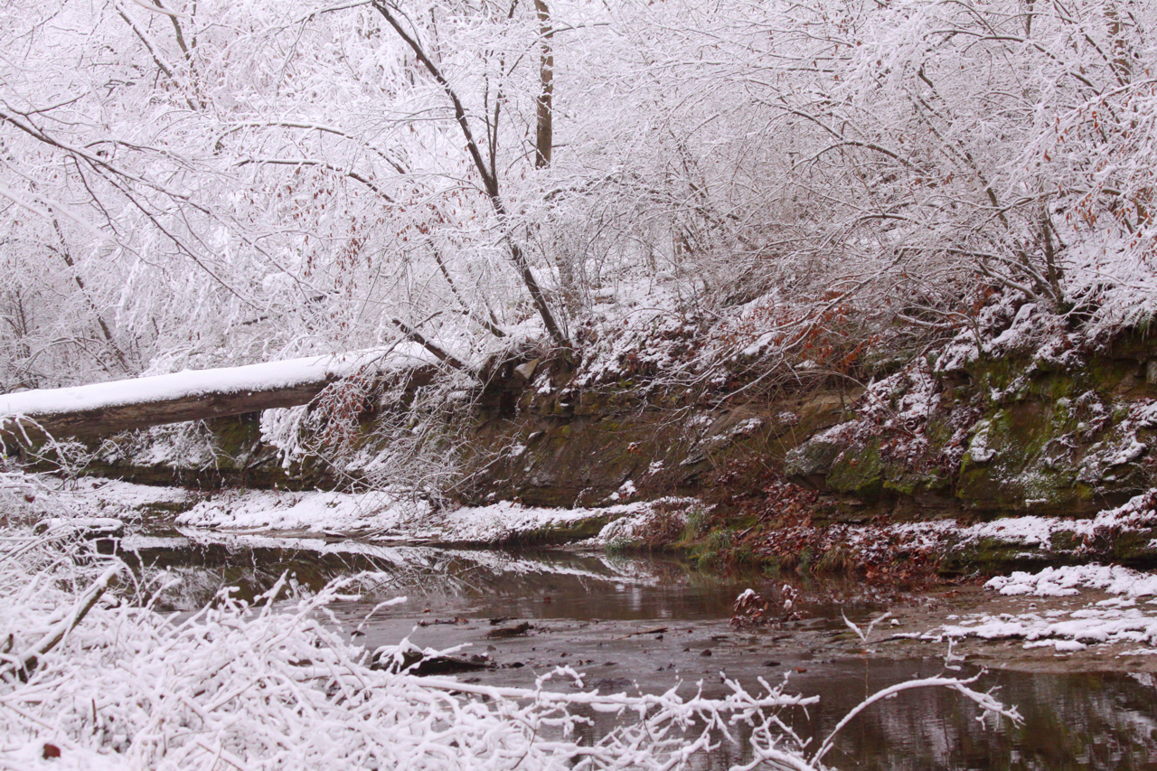 Paul Feldker: Bond Creek Winter. Monroe County.
