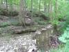 Joyce Kuergeleis: Creek. Monroe County.