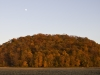 Dennis FitzWilliam: Moon over the Bluffs. Monroe County.