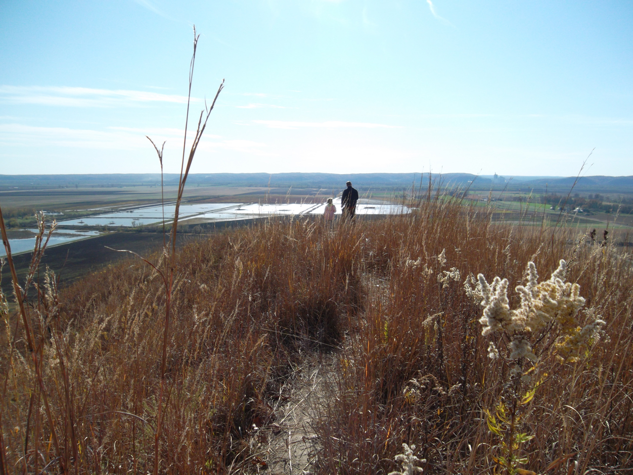 Laura Schaefer: Veteran\'s Day Hike at Fults Hill Prairie Nature Preserve 2. Monroe County.