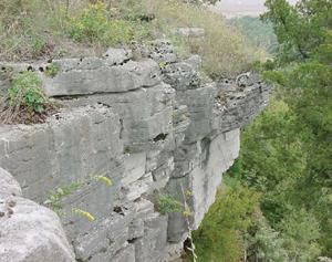 cliff edge, D. Newman