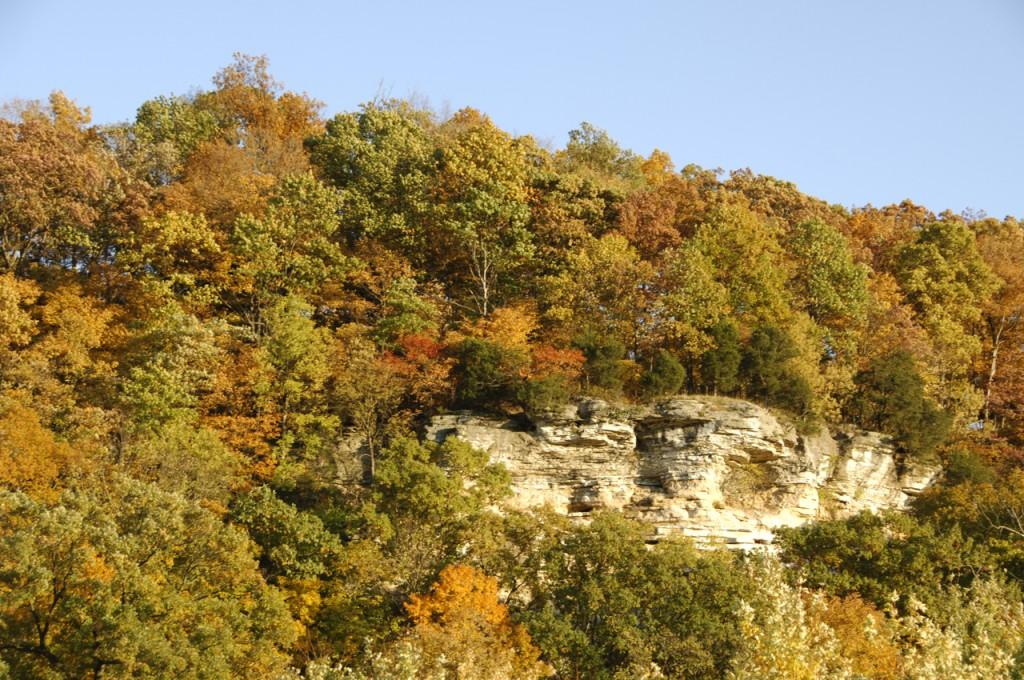 bluff landscape, T. Rollins