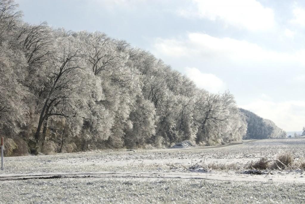Bluff scape, winter, T. Rollins