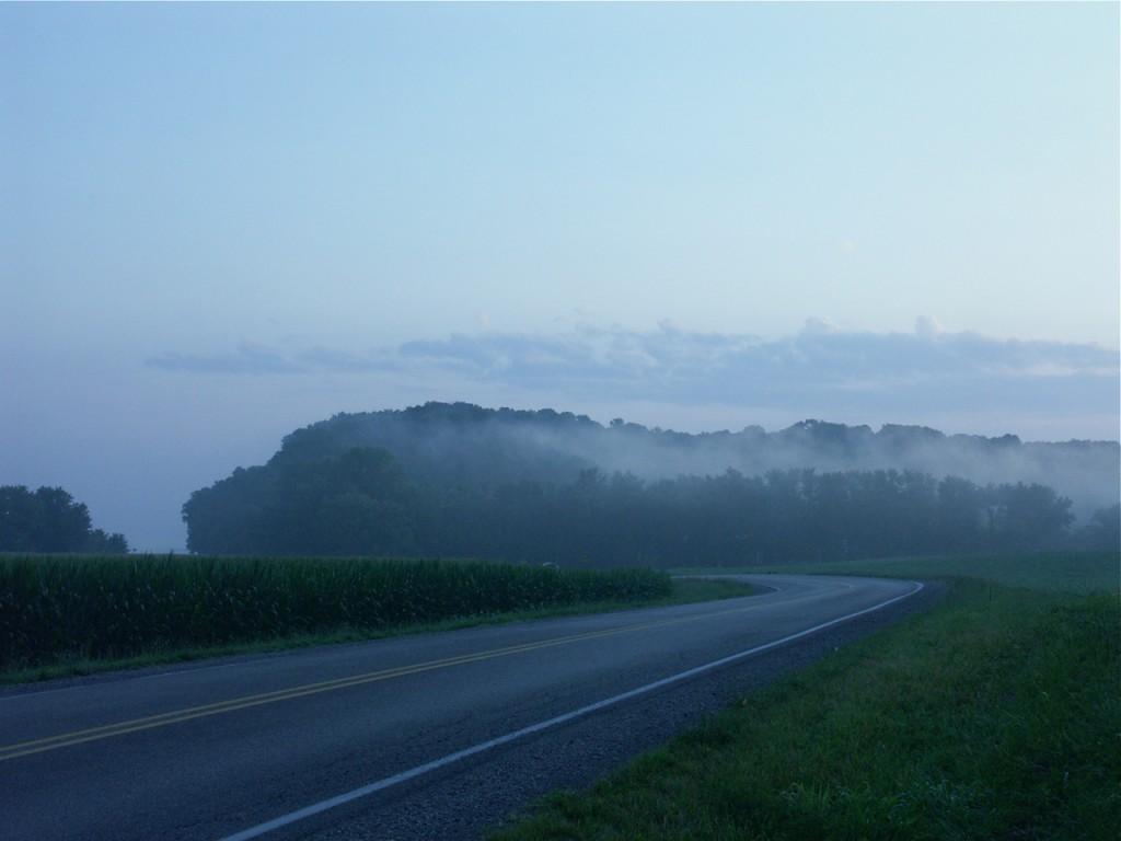 landscape & road, D. FitzWilliam