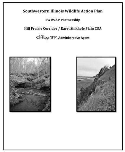 SWIWAP cover, Clifftop